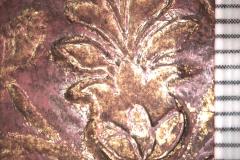 Tulipánbélyegző (10x-s nagyításban)