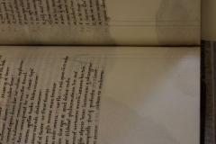Az állat foltossága a pergamenlapokon is megjelenik
