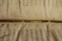 A gerinc bordaközeit keskeny pergamen csíkokkal kasírozták meg