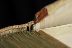A pergamen alapra varrott oromszegő a tábla élére fut