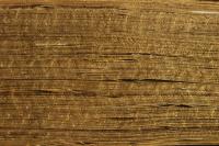 Detail of gauffered edge