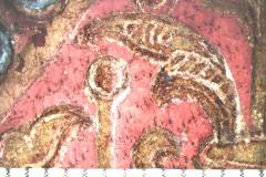 Peltalevél (10x-s nagyítás)