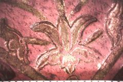 Tulipán (10x-s nagyítás)
