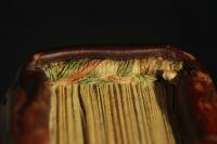 Fragmentary saddle-sewn tailband