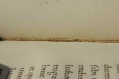 A pergamenszalagok vonalában az ívközépben a fűzőcérna duplázódik