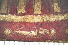 Asztragalosz  (10x-s nagyítás