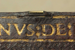 A háttáblán fejnél lekopott a csatot takaró bőr, s így teljes egészében láthatóvá vált a sárgaréz karmos csat akadási része