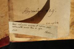 Kézírásos bejegyzés az 1910-es restaurálásról