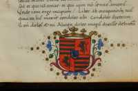 Coat-of-arms on the starting page