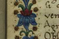 Detail of the frame decorating the frontispiece