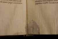 The spot of the animal providing the parchment appears at the edge of the sheet