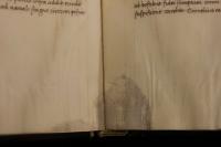 A pergament adó állat foltja megjelenik a lap szélén