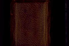 cod-lat-344_0387_gerinc