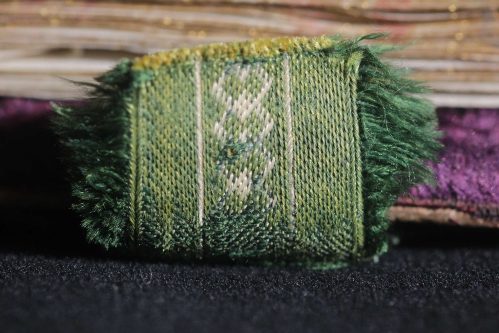 The edges of a fragment of the woven ribbon holding the clasp are decorated with fringes