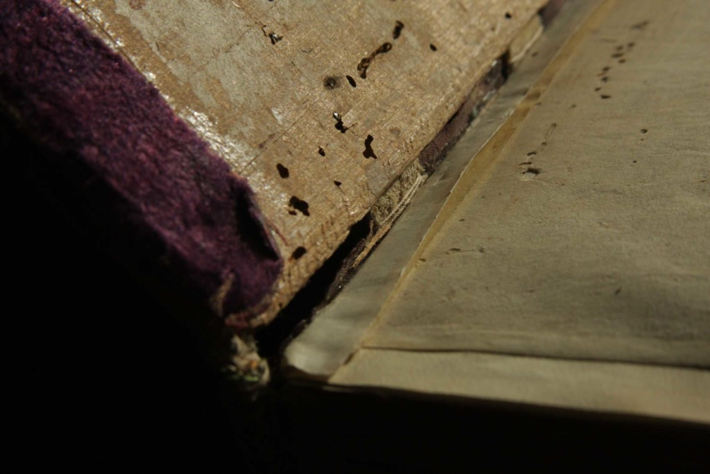 Narrow bevel on the inner spine edge of the board