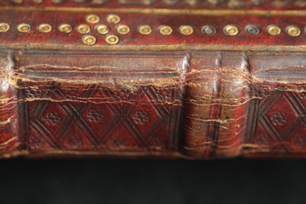 A gerinc részlete. Jól látható a zsineg lekötésnyoma a bordatövekben és a dupla borda osztásában