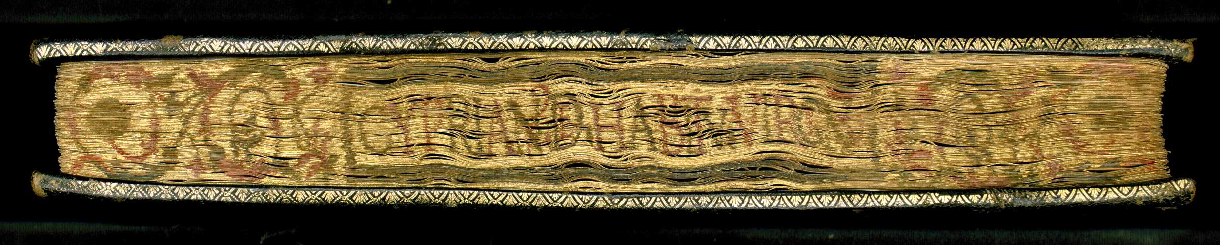 Fore-edge of St. Cyprian corvina, decorated with gilding and painting. This edge type was characteristic of part of the corvinas that had been bound in the Buda workshop. Budapest, NSZL, OSZK Cod. Lat. 529